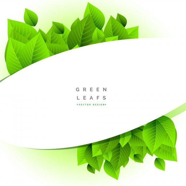 Eco green leaves floating on white vector background ((eps (14 files)