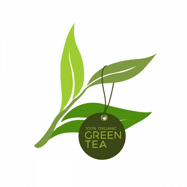Green tea leaf ((eps (24 files)