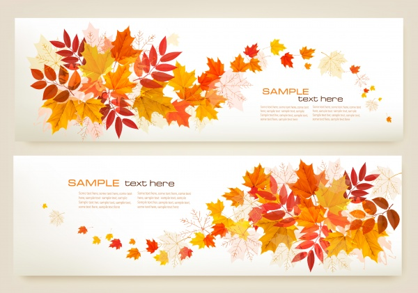Autumn vector background with fruit and leaves, autumn sale banners ((eps - 2 (18 files)
