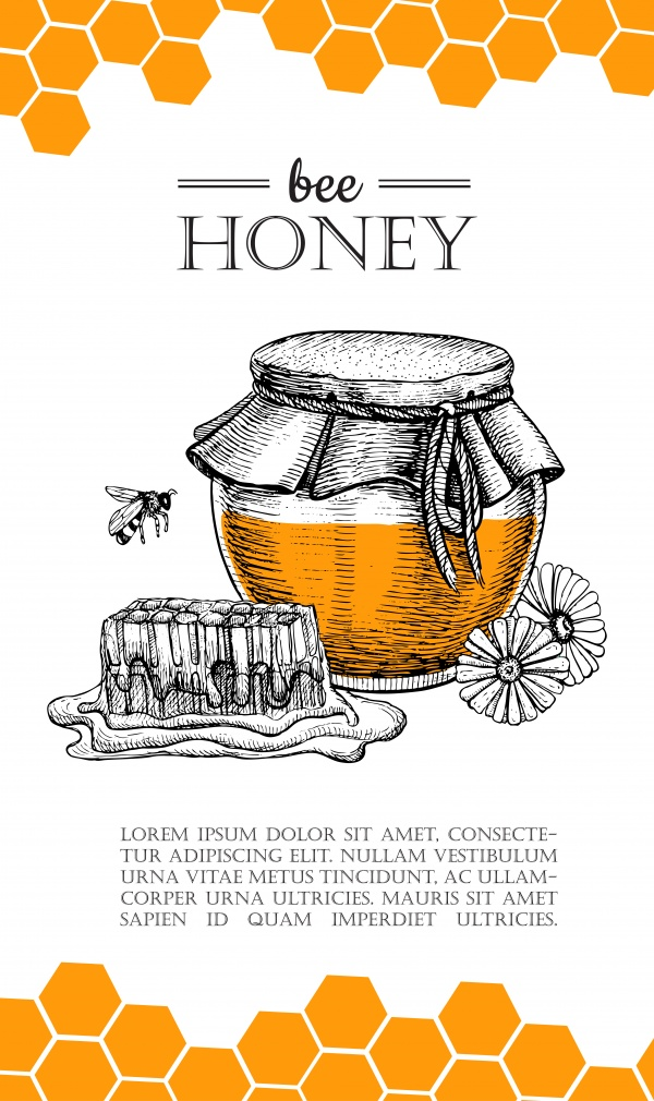 Honey vintage illustration ((eps (16 files)