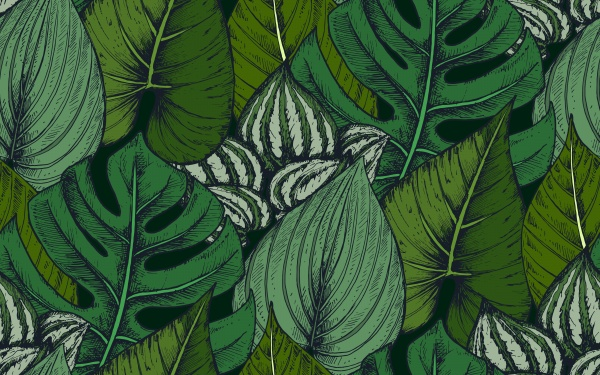 Tropical seamless patterns ((eps - 4 (16 files)